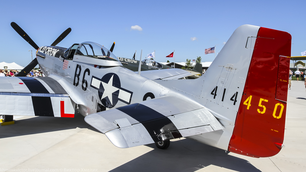 Warbirds-38.jpg