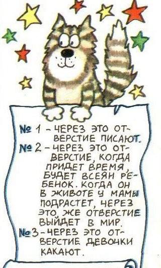 deti_11