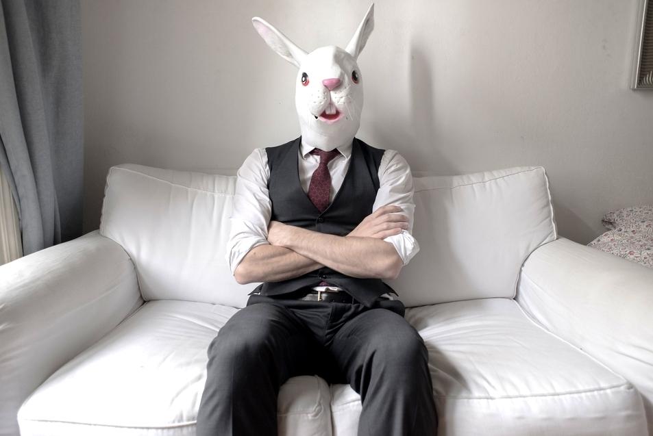 мужчина в костюме зайца картинки наверное видели сизый