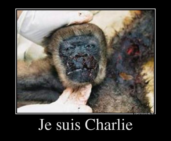 14597_je-suis-charlie_demotivators_to