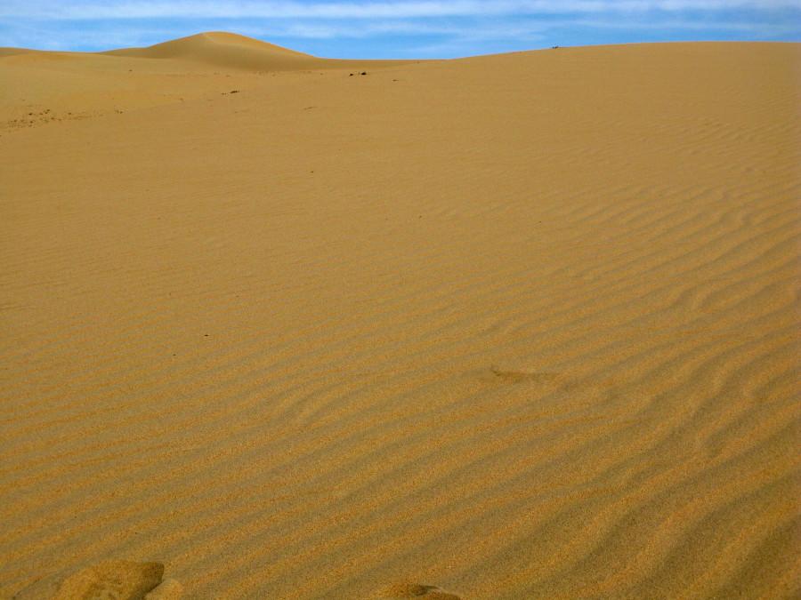 В песках Мангышлака
