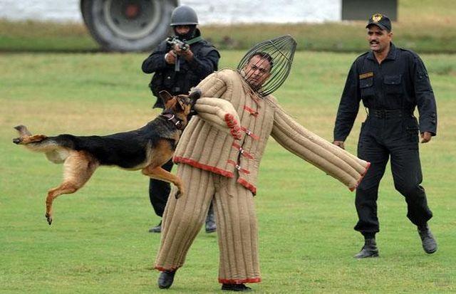 Индийский спецназ