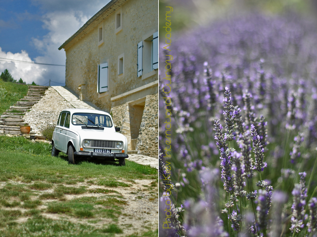 Provence voiture