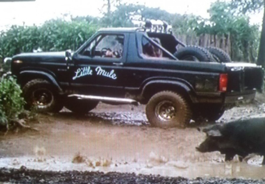 ford-bronco-little-mule