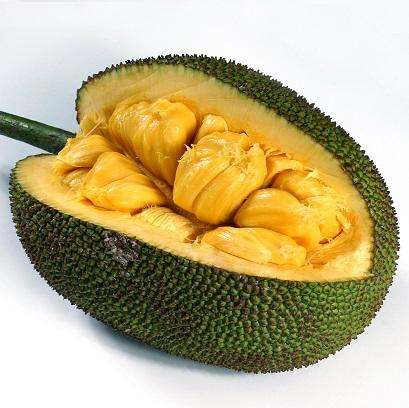 jackfruit_3054205-sq1