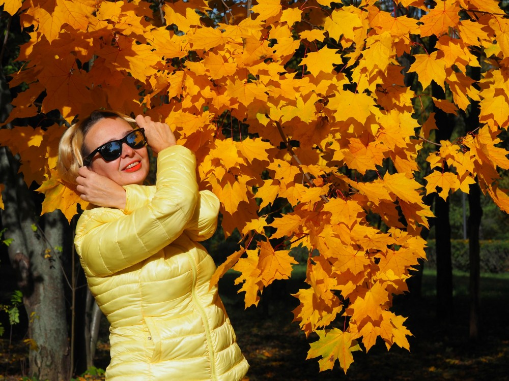 Осень. Парк 50 лет Октября Москва