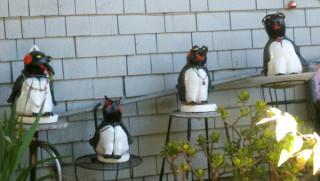 Penguins on stools!