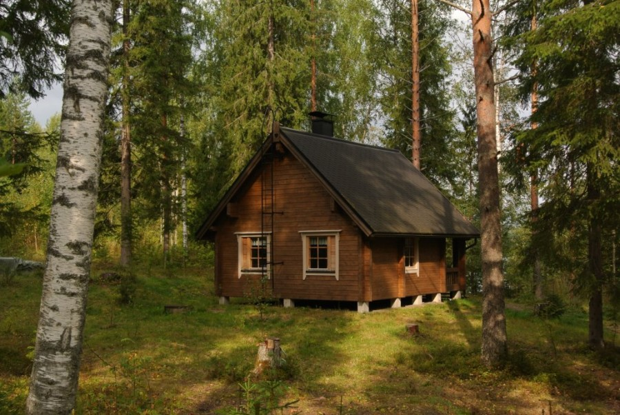 Лесу дома в русскую и