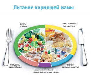 9f5a7ec305bc5b Питание кормящей матери. Вступительное: kinda_cook — LiveJournal