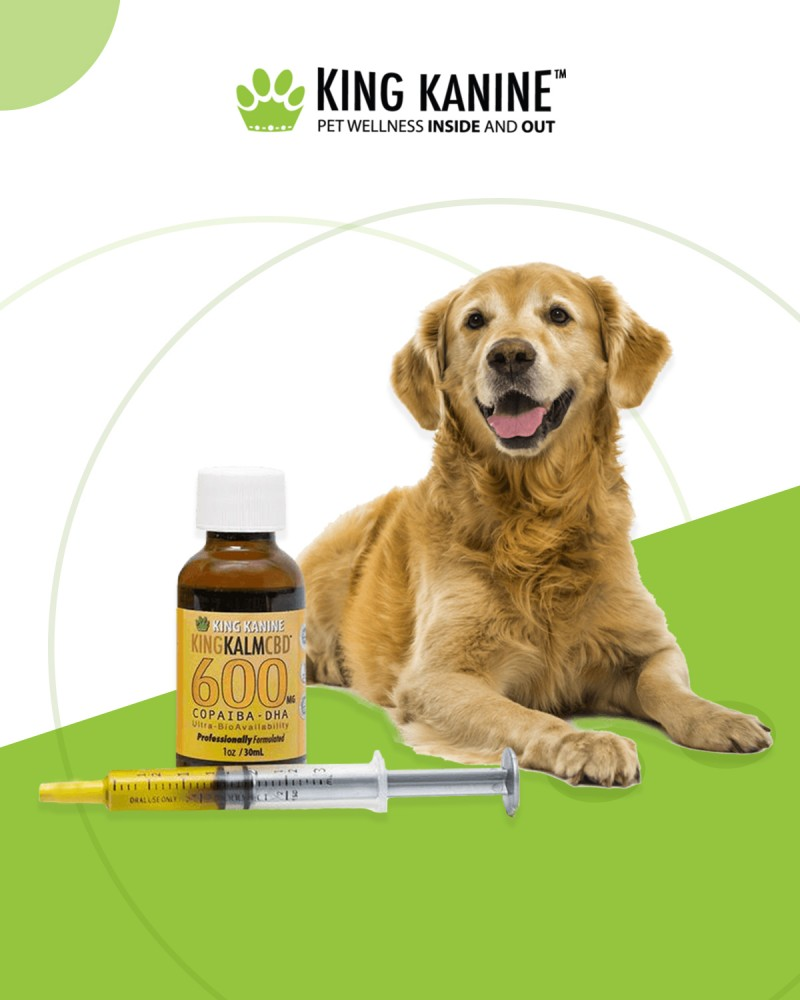 King Kalm 600 Mg CBD for Dogs | King Kanine