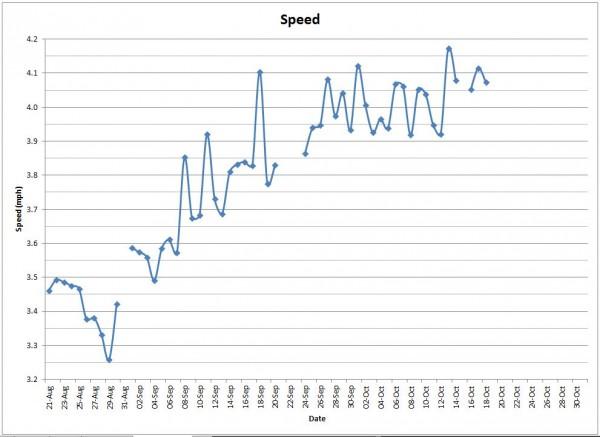 speed1019
