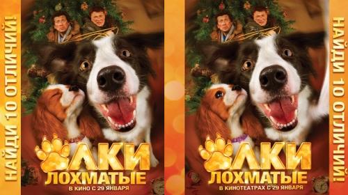 Yolki-lokhmatie-1