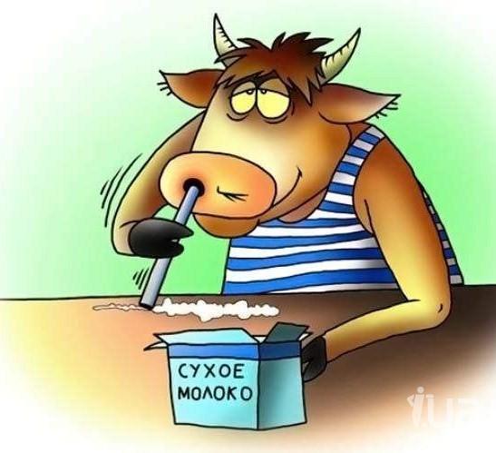 Корова_молоко