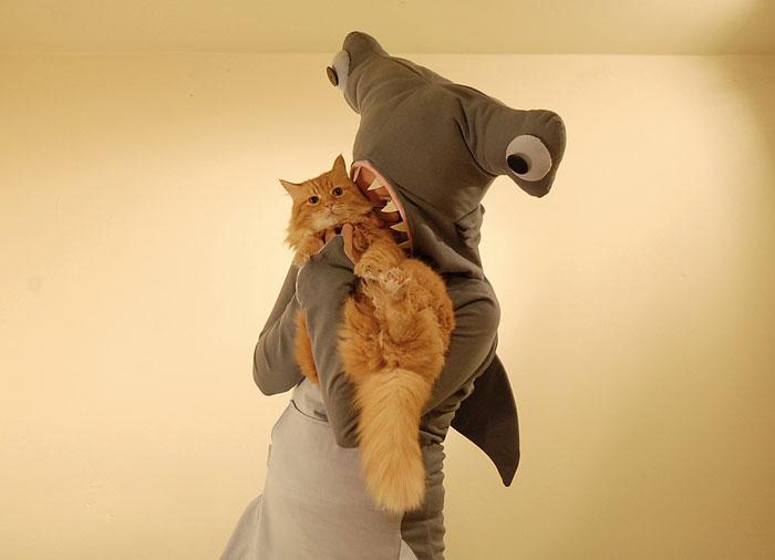 Прикольный костюм акулы