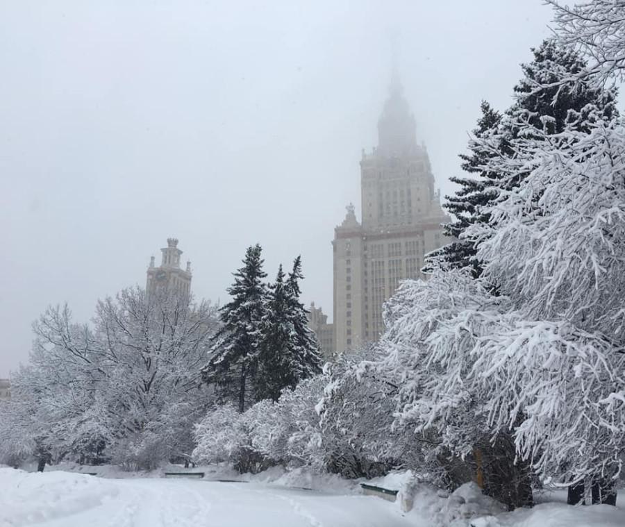 мгу зима1
