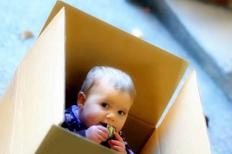 baby-umzugskarton (900x599).jpg