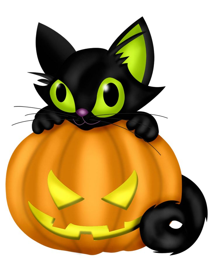 e4aef7ac32708720149a99876d0d6049_1121-best-halloween-clipart-backgrounds-images-on-pinterest-halloween-cat-pumpkin-clipart_736-891