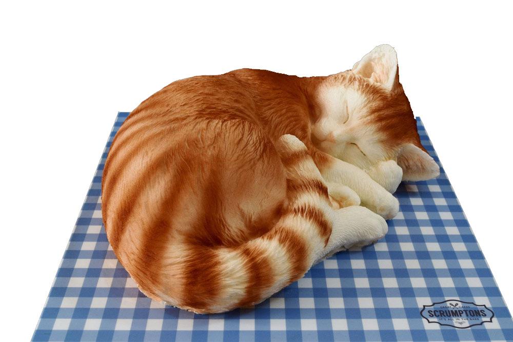 cat-cake-1