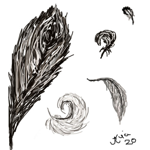 feathers-4-bingo