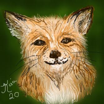 fox-4-bingo