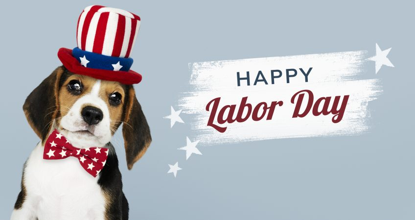 happy-labor-day-from-cute-beagle-uncle-sam-hat-848x450