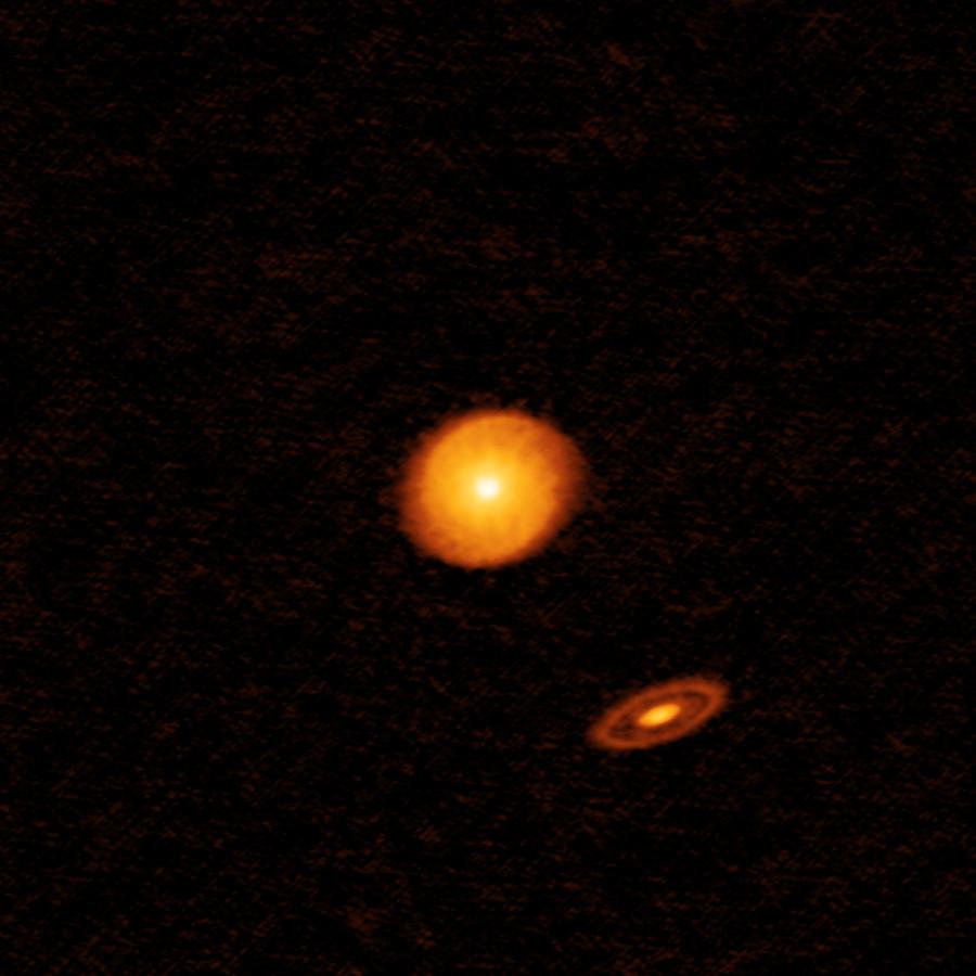 Три звезды и два протопланетных диска