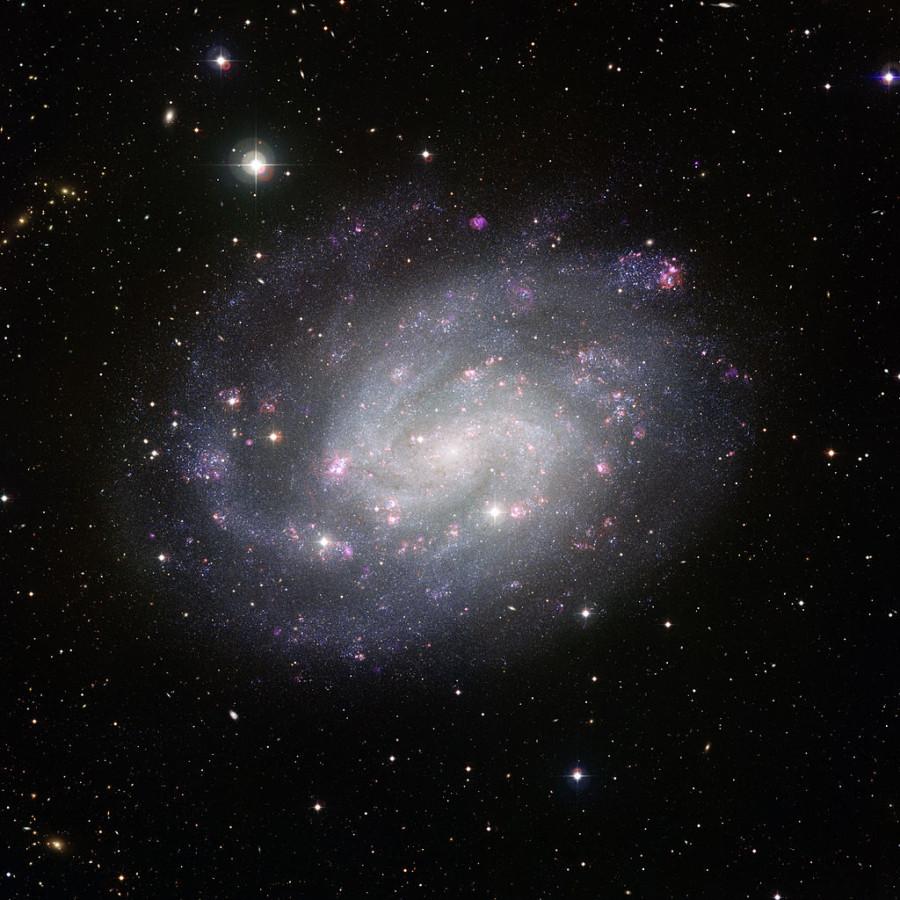 Галактика NGC 300