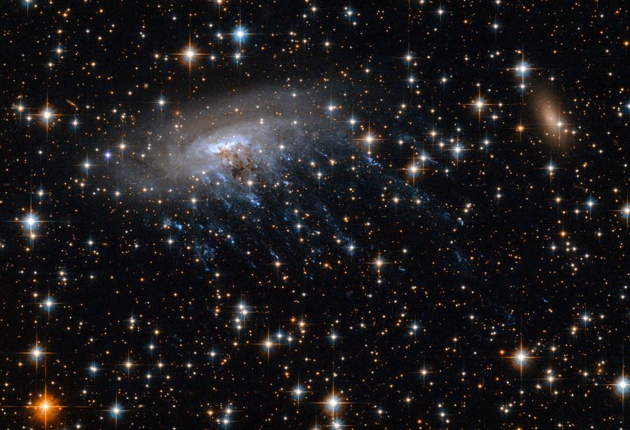 Галактика-медуза южного неба галактика, 137001, галактик, звездообразования, можно, «хвосты», скопления, пространство, газовые, сфотографированы, является, результате, галактикамедузаESO, ближайших, подобных, особенно, объектов, интересна, длинные, протяженные