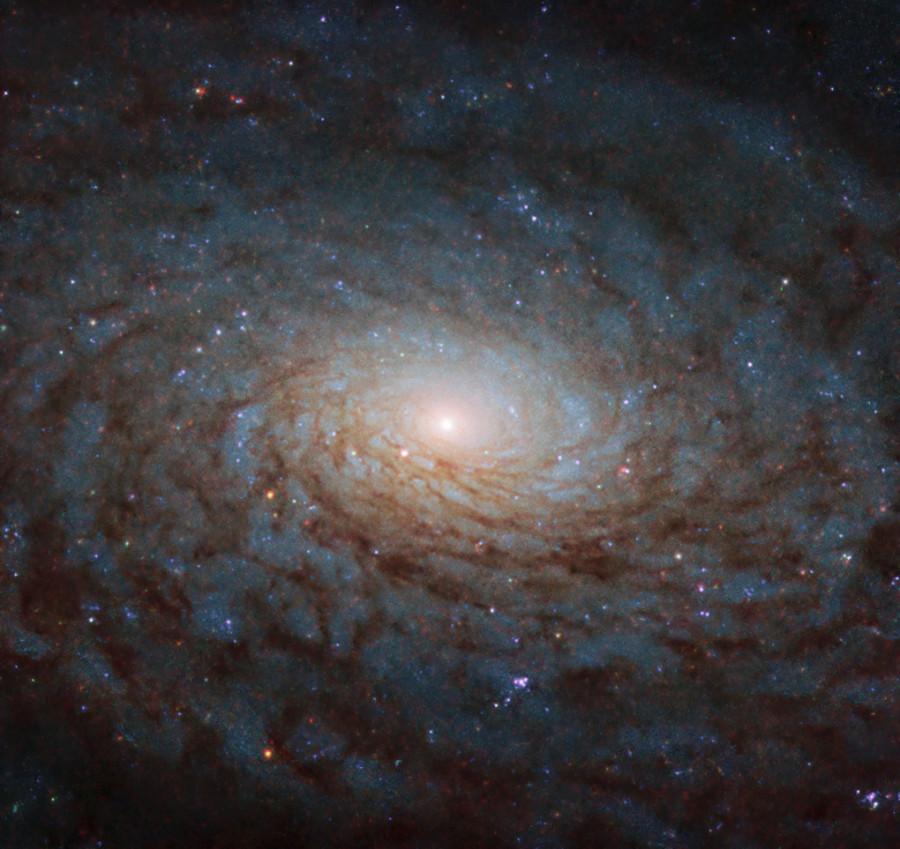 Спиральная галактика в созвездии Девы