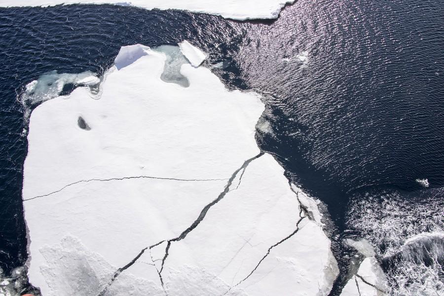 Площадь ледяного покрова Арктики продолжает сокращаться