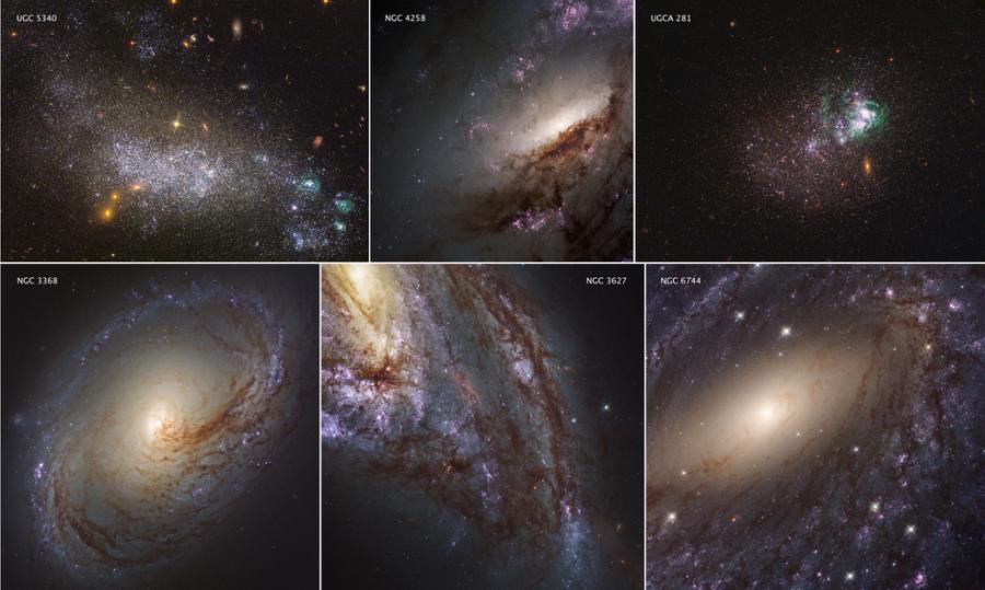 Соседние галактики в ультрафиолетовом свете
