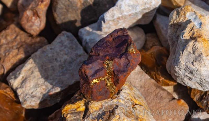 На Гидронамыве нашел золото. кошкино золото, оно же золото дураков, пирит. Но как оно блестело на солнце!