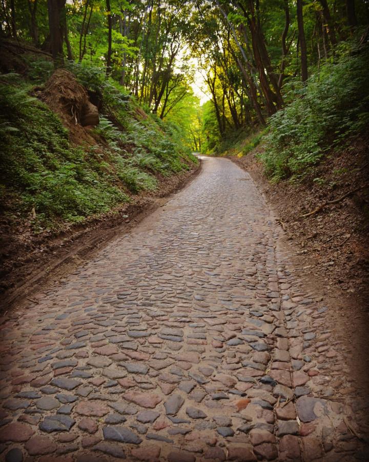 Место, где очень тихо... Калининградской, области, возили, дороги, дорог, городах, Карта, практически, середины, строили, разноцветного, полевого, брусчатке, Массовое, камня, восточной, перед, началом, своего, достигло