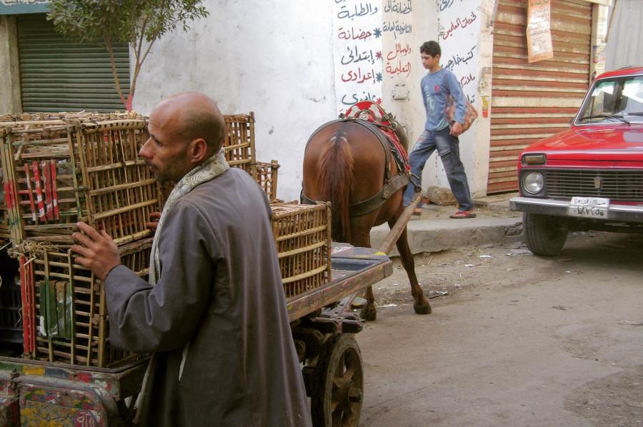 Дворы и улочки Старого Исламского Каира.