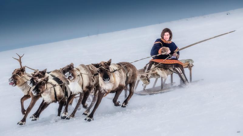 Тупой пиндос - эскимос из числа коренных жителей Аляски - мчится на гиперзвуковых санях.