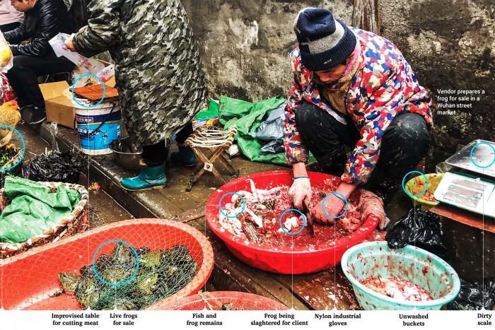 """Рынок диких животных к Ухане. Китаец чистит лягушек, тут же рядом весы и тазик, забрызганные кровью (возможно, других животных), все это делается одним ножом. Но для многих китайцев такое мясо - это """"деликатес""""."""