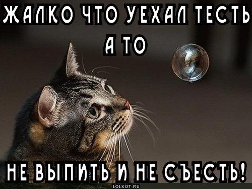 test_1369054245
