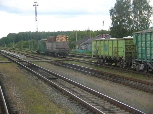 DSCN0320