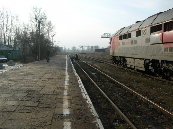 DSCN3511