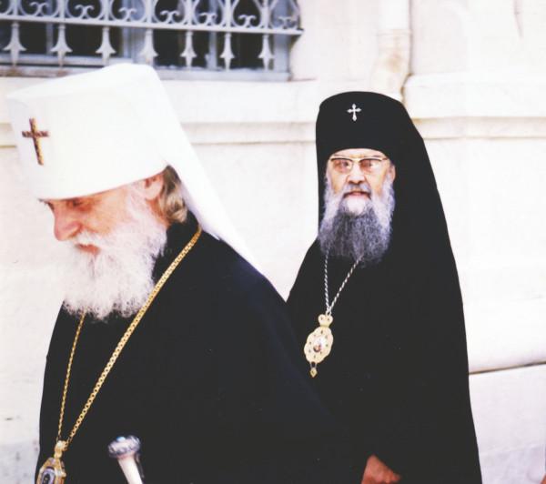 М. Вит. и Арх. Ант