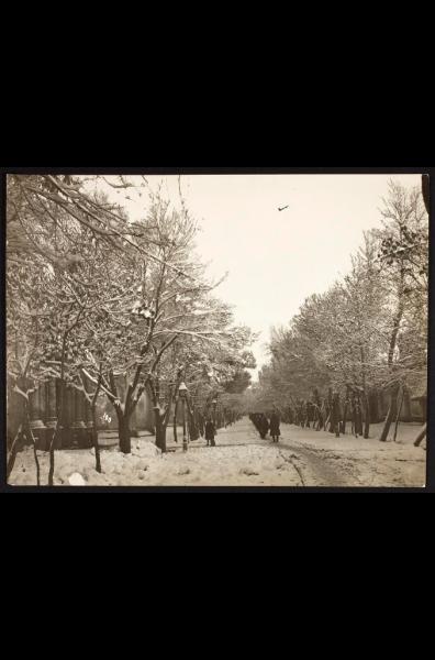улица тегеранъ