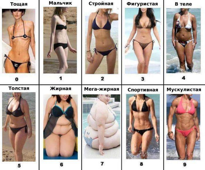 классификация груди фото