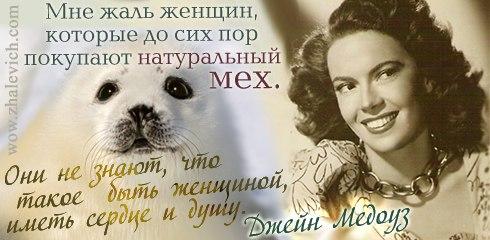 Джейн Медоуз