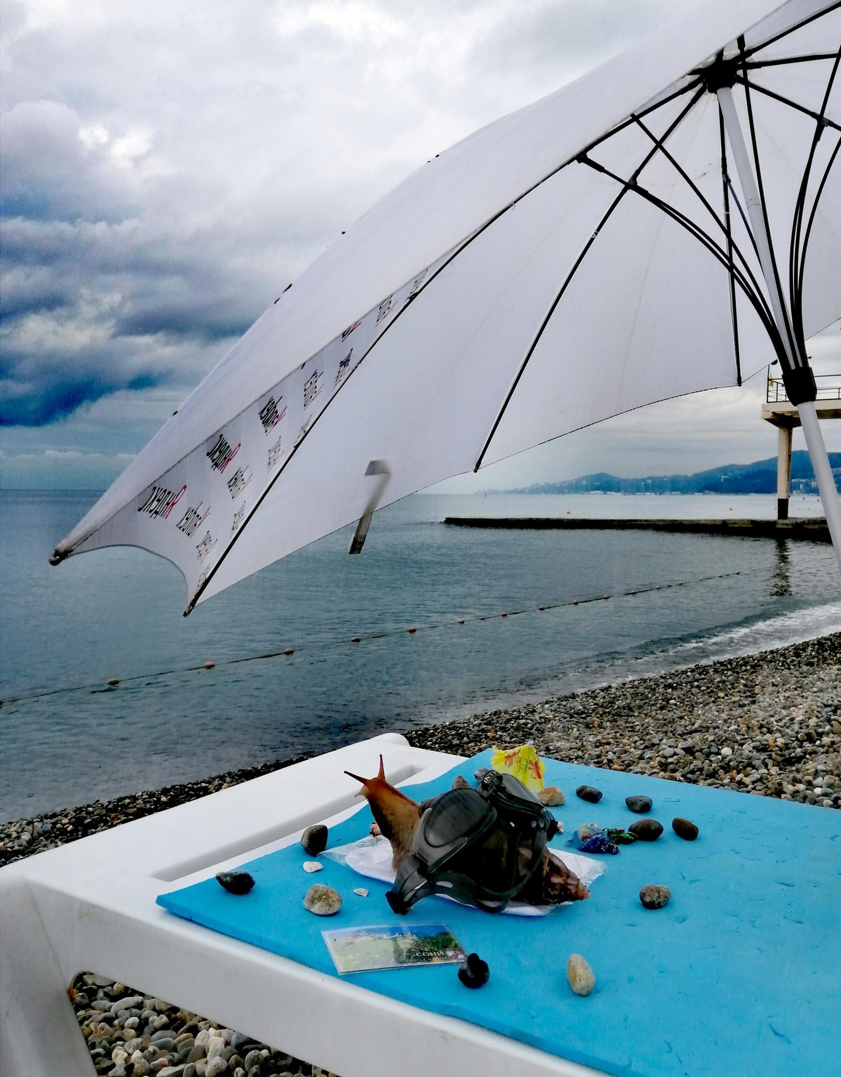 Ранним утром на пляже... Перед завтраком Фрося в плавательных очках наслаждается видом на море и представляет себя маленьким дельфином.😊 Антураж звезды пляжа - камешки, ракушки, магнитики с дельфином и видом Сочи. Перед поездкой на море ею был составлен жёсткий райдер: без персиков и манго из контейнера - ни ногой! 😃