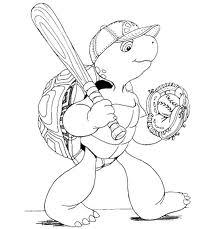 baseball kame