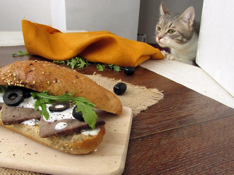Кошка Агата