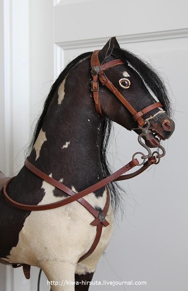 german_horse_5