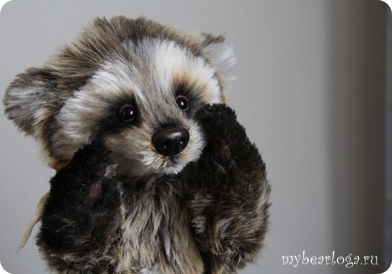 raccoon_3