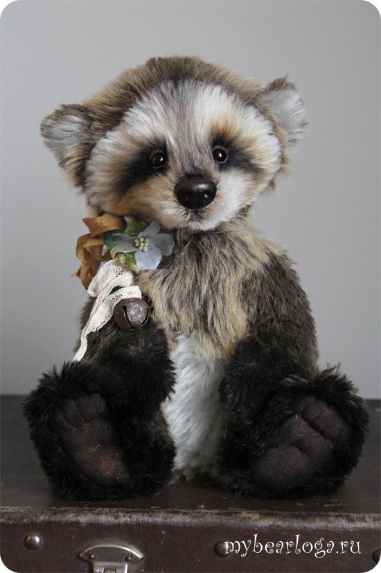 raccoon_4