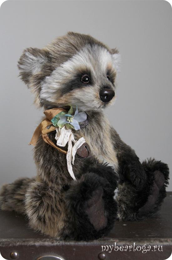 raccoon_5